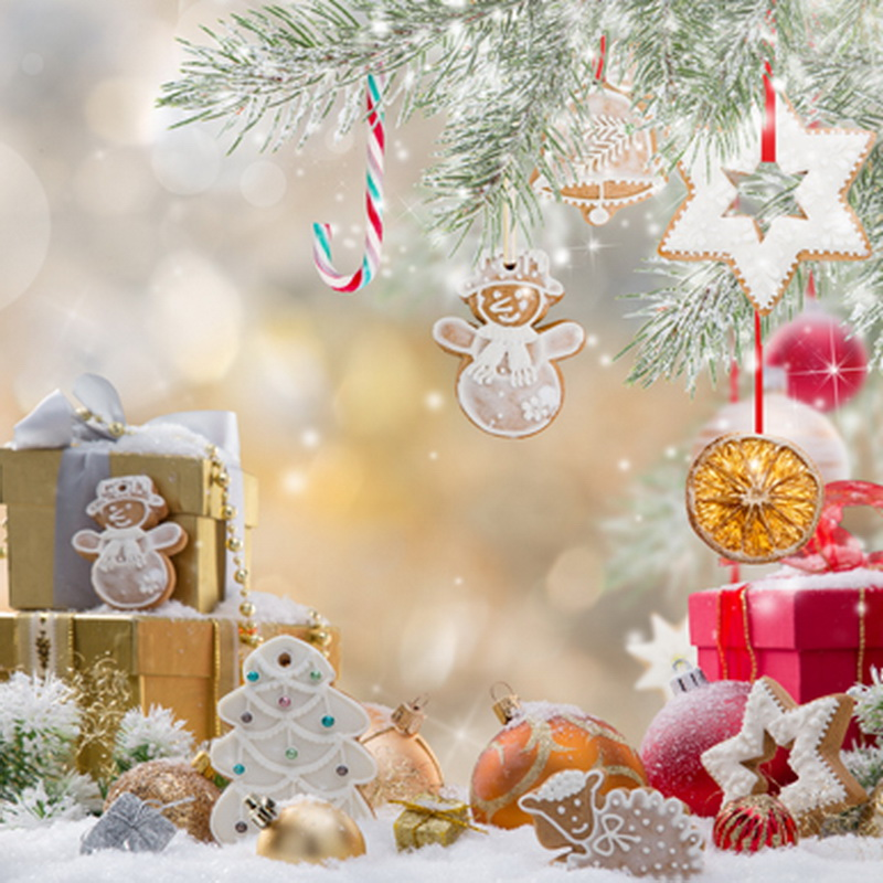 Fashion Vinyl Christmas Photography Backdrops Winter Attractive - christmas theme background