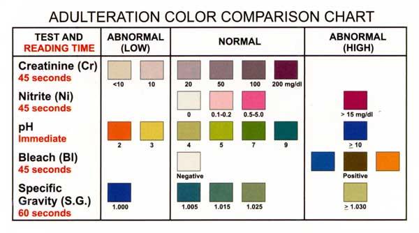 10 panel urine drug test cup 10 panel drug test cup kit - sample urine color chart