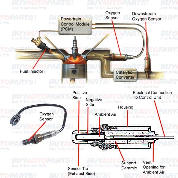 Durango O2 Sensor Wiring Diagram Wiring Diagrams