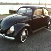 1954 Volkswagen Oval Beetle for Sale