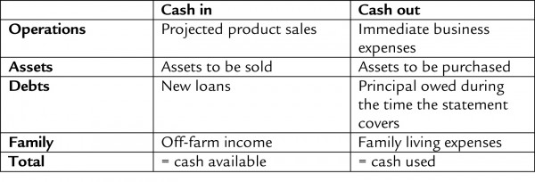 CISA Financial Management 101 Financial Statements