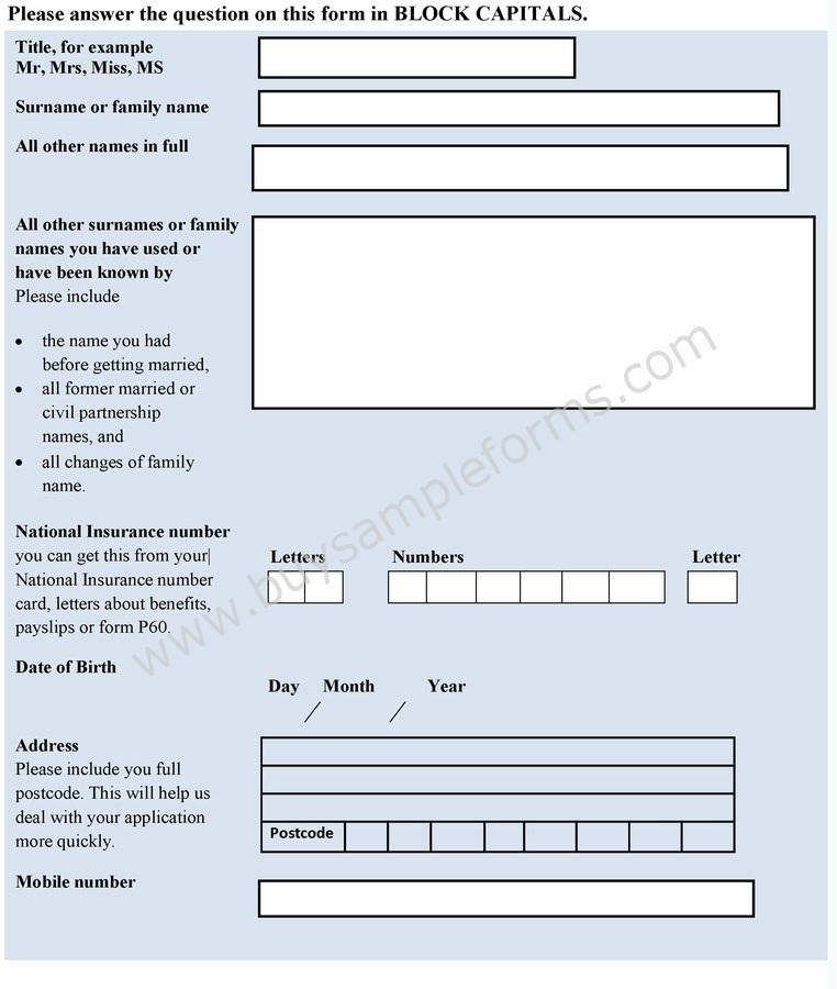 Credit Application Form Template - application forms template