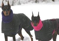 Warm coats and snowsuits for seniors - GermanShepherdHome.net