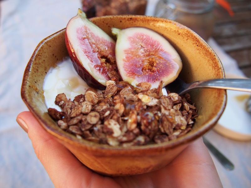 Cacao Granola BY ROSIE on www.therosedogblog.me