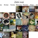 June Photo-a-Day