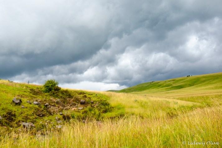 Kitulo NP: rain clouds