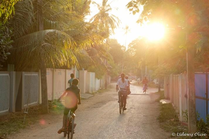 Tranquil streets off Jaffna