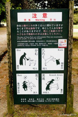 Sign: feeding deer is dangerous
