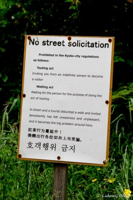 Siign: no street solicitation