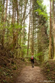 Walking from Magome to Tsumago