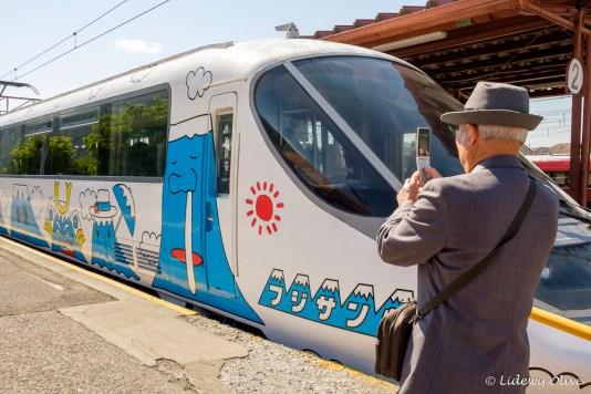 Fuji train