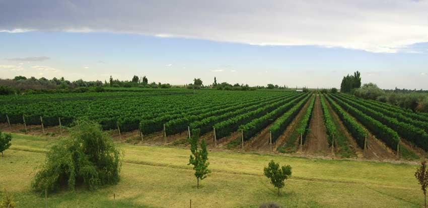 Argentina Farm Lands