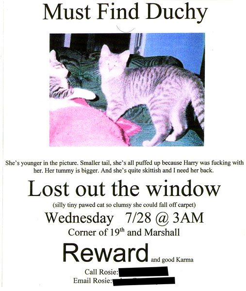 lost pet flyer template - Lost Dog Flyer Examples