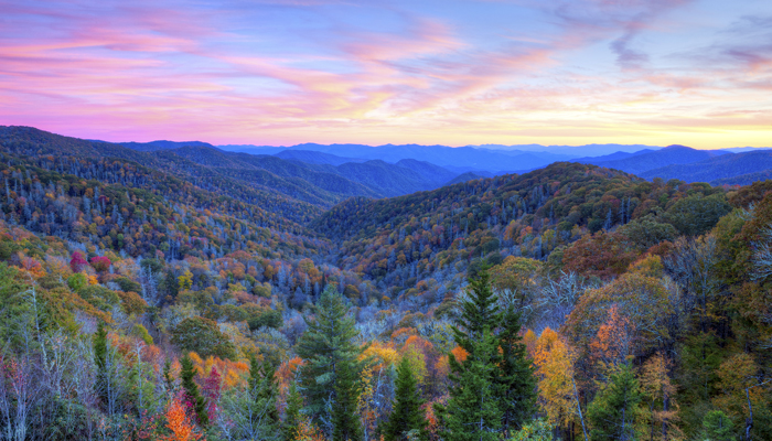 Fall In The Smokies Wallpaper 5 Great Ways To See Peak Foliage In The Smoky Mountains