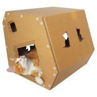Modern Cardboard Cat House  a modern explorer on a night out