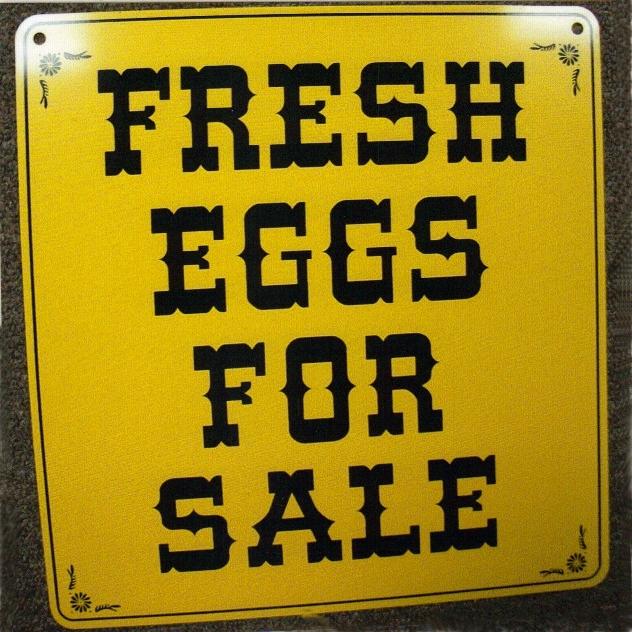 Fresh Eggs for Sale\ - forsale sign