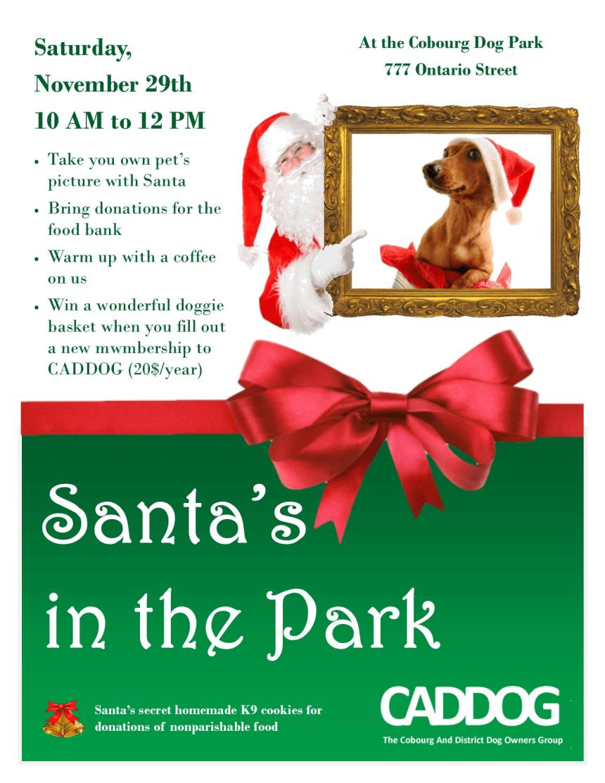 Santa_in_the_park