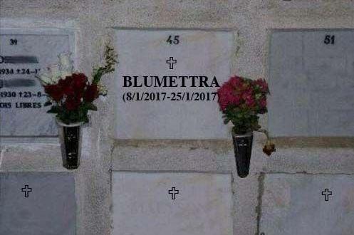 BLUMETTRA