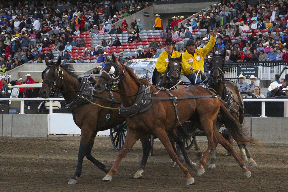 Calgary Stampede Put the Boots to Hunger 2015