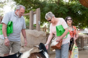 Positive Aging: Talk to the Animals