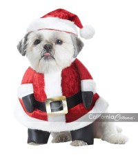 SANTA PAWS DOG COSTUME - California Costumes