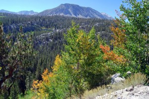 Rock Creek Road (9/1/14) Alicia Vennos/Mono County Tourism