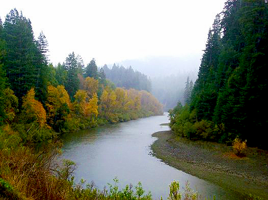 Eel River (10/17/14) mlhradio, Flickr Creative Commons