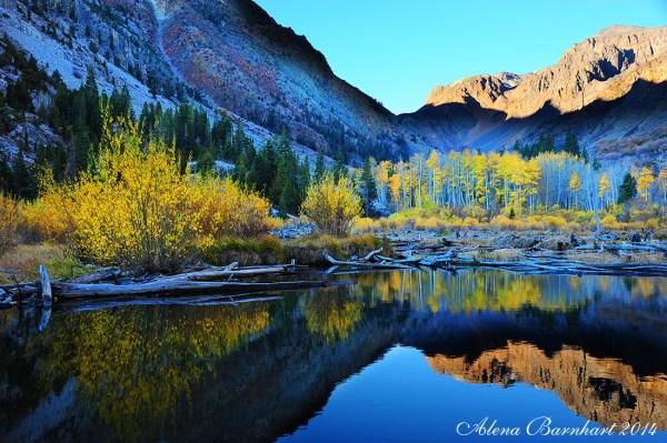 June Lake Loop (10/25/14) Alena Barnhart
