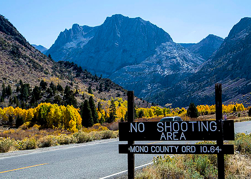 Despite the warning, Greg Newbry shot this at June Lake, anyway (10/19/14) Greg Newbry