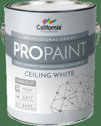 california ceiling paint | www.Gradschoolfairs.com