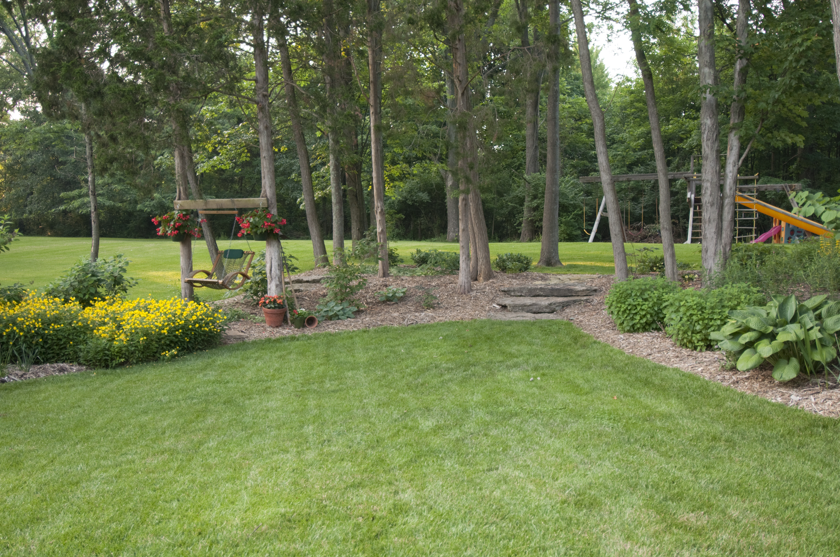 Fall Wooded Wallpaper Spring Clean Your Lawn Atlanta Pest Control