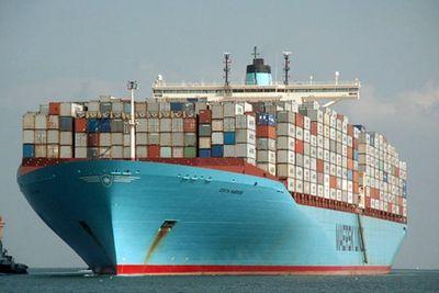 Crecen las exportaciones un 15.1% y la celulosa fue el producto de mayor incidencia positiva