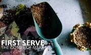 first serve series (mark)