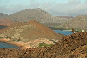 Bartolome, Galapagos - Wildlife Travel