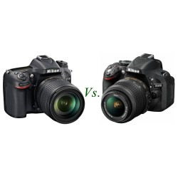 Small Crop Of Canon T6i Vs Nikon D5500