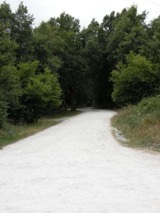 Roncesvalles - Larrasoana 06 camino