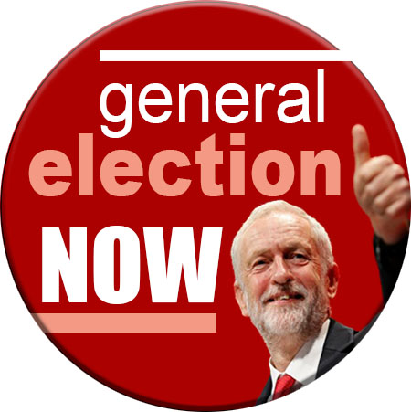 general election now badge