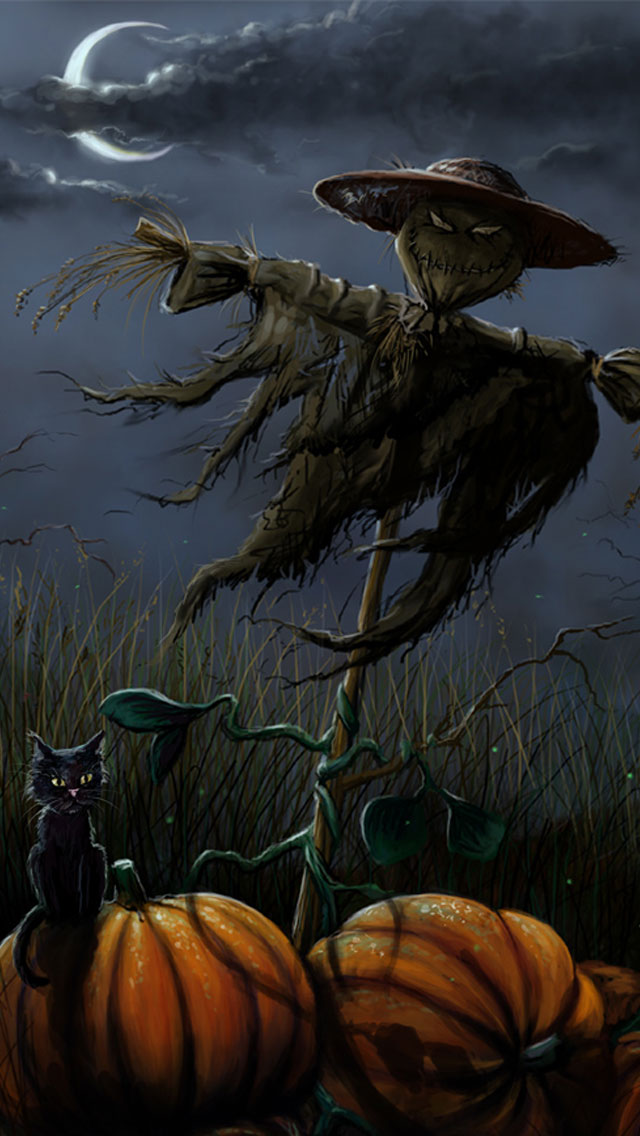 New Year Wishes Wallpapers With Quotes Scarecrow With Black Cat And Pumpkins Halloween Iphone 5