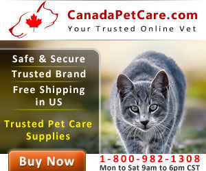 Cheapest Pet Supplies Online