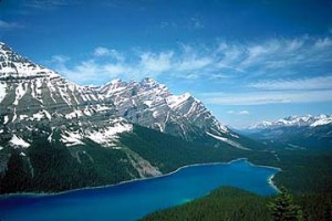 Peyto lake, a fine example of the Canadian Rockies' amazing lakes.