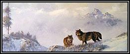 Wolf Painting © Milton Achtymichuk