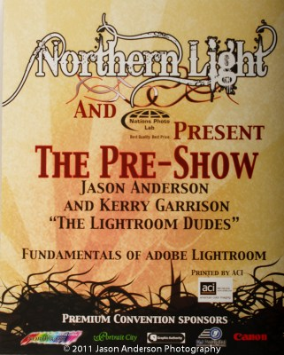 Northern Lights Poster