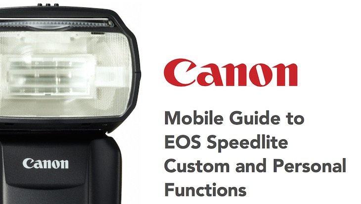 canon speedlite 320ex manual pdf