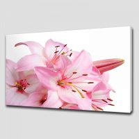 PINK LILY FLORAL CANVAS PRINT PICTURE WALL ART