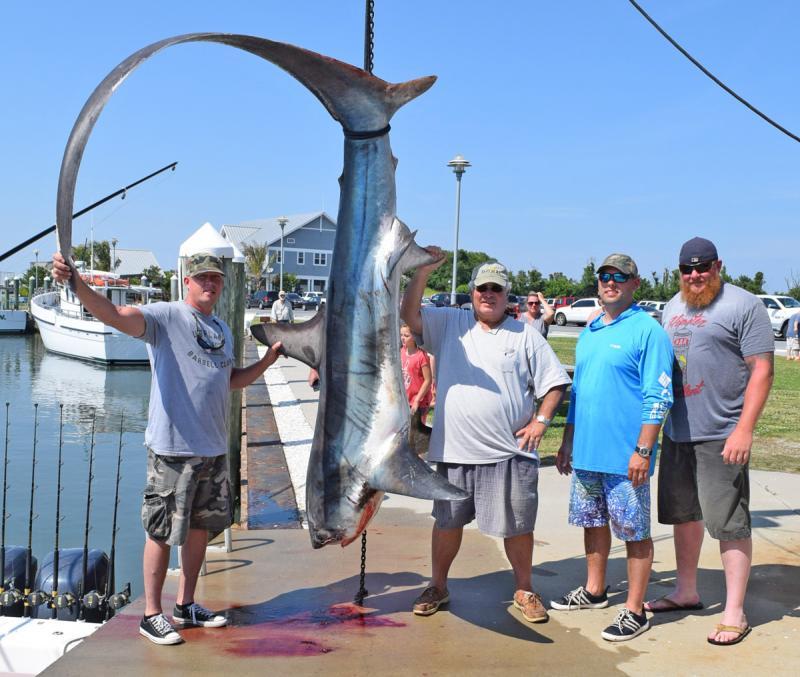 Some tips for shark fishing Cape Gazette