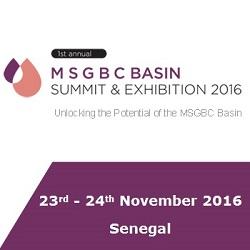 MSGBC BASIN 250 X 250