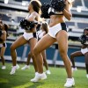 2011 Philadelphia Eagles Odds | Preview | Picks