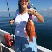 Captiva Fishing Report: Hogfish ~ Sanibel, Captiva, North Captiva, #Captiva