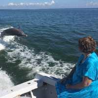 Captiva Fishing Report: Dolphins Jumping The Wake, Sanibel, Captiva, North Captiva, #Captiva