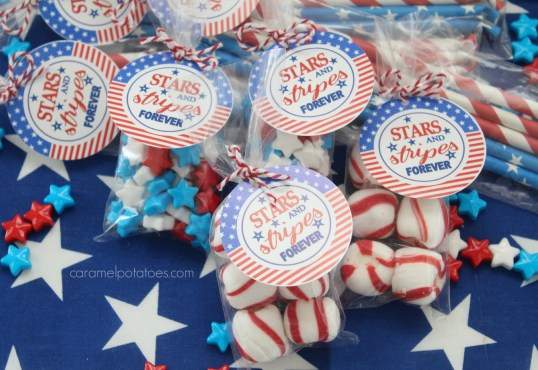 stars and stripes 023